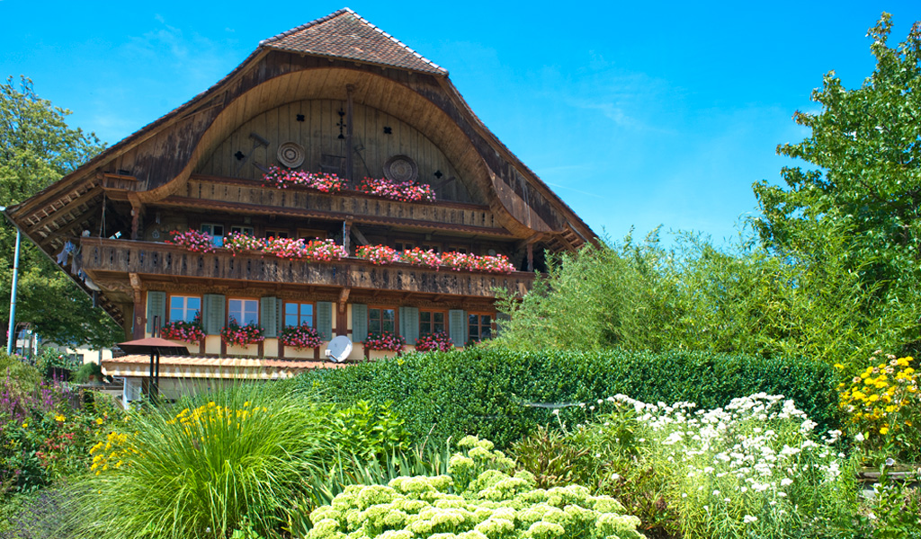 Firma riggenbach gmbh garten und landschaft riggenbach for Gartengestaltung firma